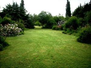 giardino-botanico